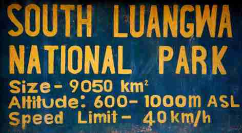 Safari Plakat